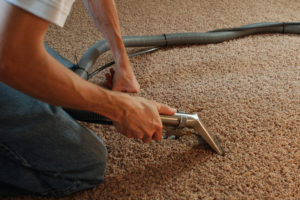 Professional Removal of Stain on Carpet