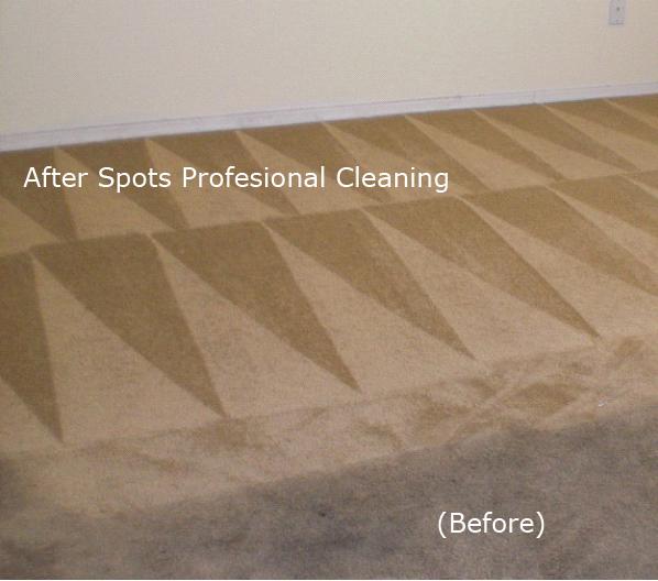 Spots Carpet And Tile Cleaning Services Spot S Carpet
